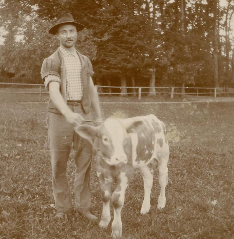 1909, cour de la ferme, emplacement du futur potager. Au fond, le bosquet.